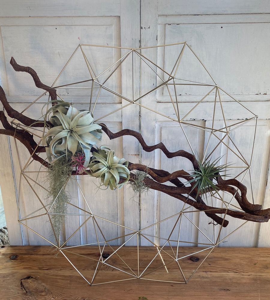 Air Plant Metal Wreath