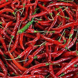 Pepper Cayenne Large Red Thick