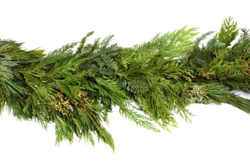 Noble, Cedar, Juniper, and Pine Mix Garland