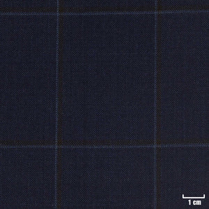 226313 - DARK BLUE, BROWN CHECKS