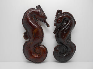 Seahorse - Curly Tail