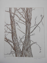 Load image into Gallery viewer, 'Branch Out' by Sandy Robinson
