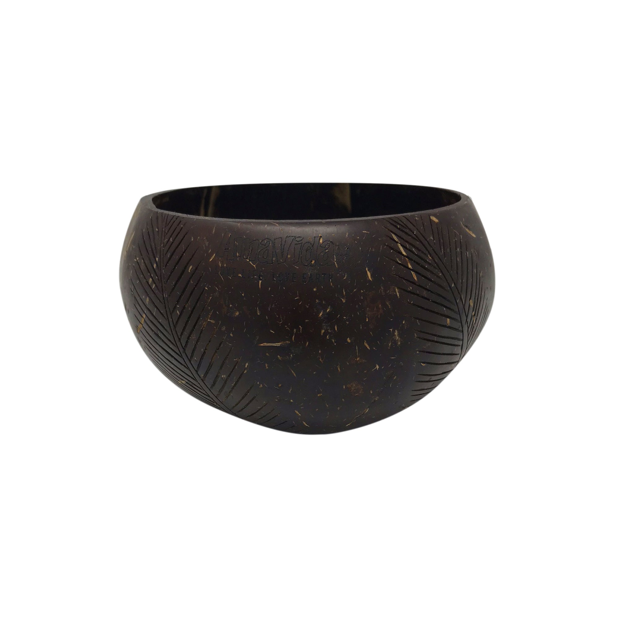 Coconut Shell Bowl (Polished)