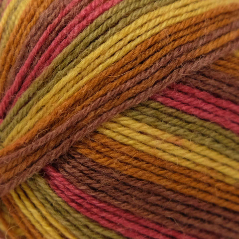 West Yorkshire Spinners Signature (4ply) Autumn Leaves (885)