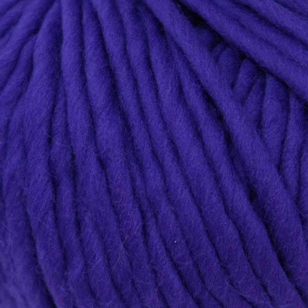 Wool and The Gang (Crazy Sexy Wool) Ultra Violet