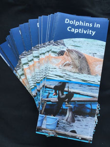 dolphins in captivity trifold brochures front