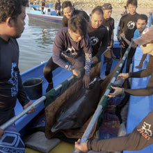 Load image into Gallery viewer, dolphin rescue support boat fuel