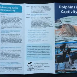 dolphins in captivity educational brochure