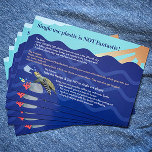 single use plastic educational postcard dolphin project