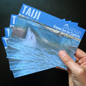 Taiji Ground Zero for Captivity Informational postcard dolphin project