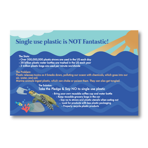 Clean Ocean Informational Postcards