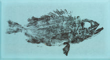 Load image into Gallery viewer, Aeronaut Designs Gyotaku Fish Print