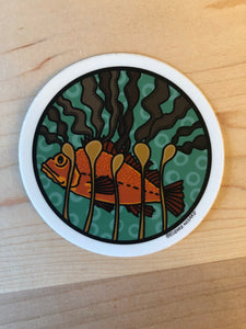 Yelloweye Fish Sticker