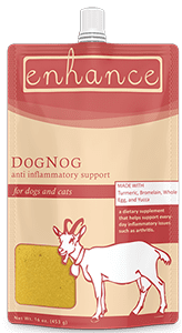 Steve's Real Food Enhance Dog Nog