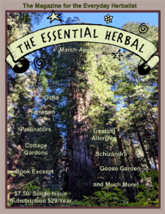 March April 2020 Essential Herbal