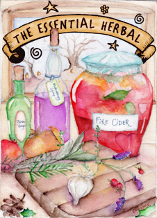 November December 2014 - The Essential Herbal