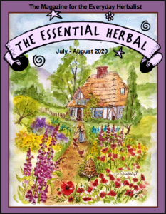 July August 2020 cover from the essential herbal magazine.  Cottage in the woods with foxgloves, poppies, and trees watercolor debra sturdevant