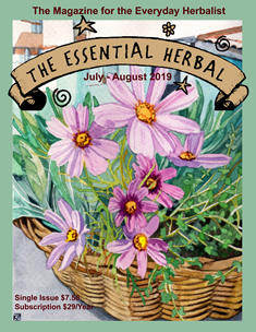 Current Issue - The Essential Herbal