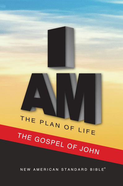 NAS 2020 Plan of Life - Gospel of John (Full Case of 300)