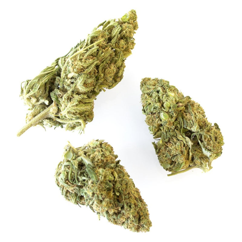 Seasonal strains of hemp flower for smoking or infusing oil