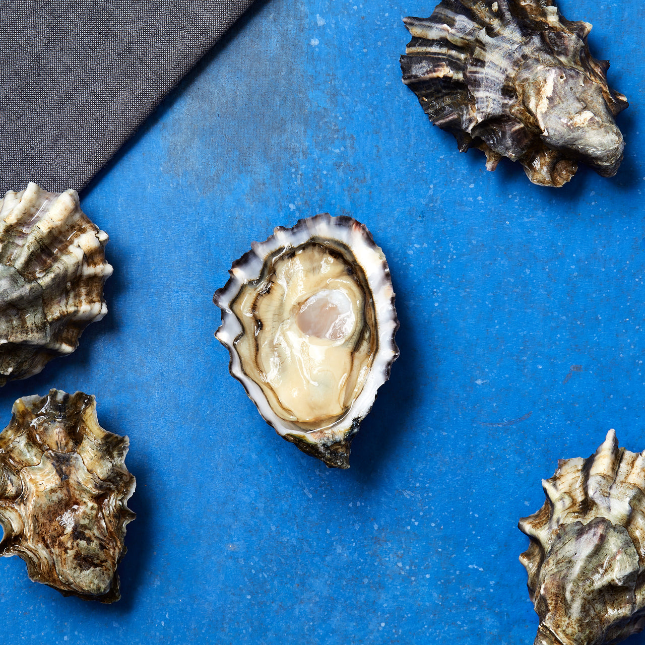 Fresh Pacific Oysters (Case of 64)