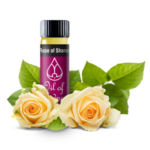 Oil of Gladness Anointing Oil<br> Rose of Sharon