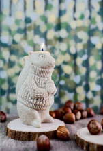 Load image into Gallery viewer, Squirrel Candle