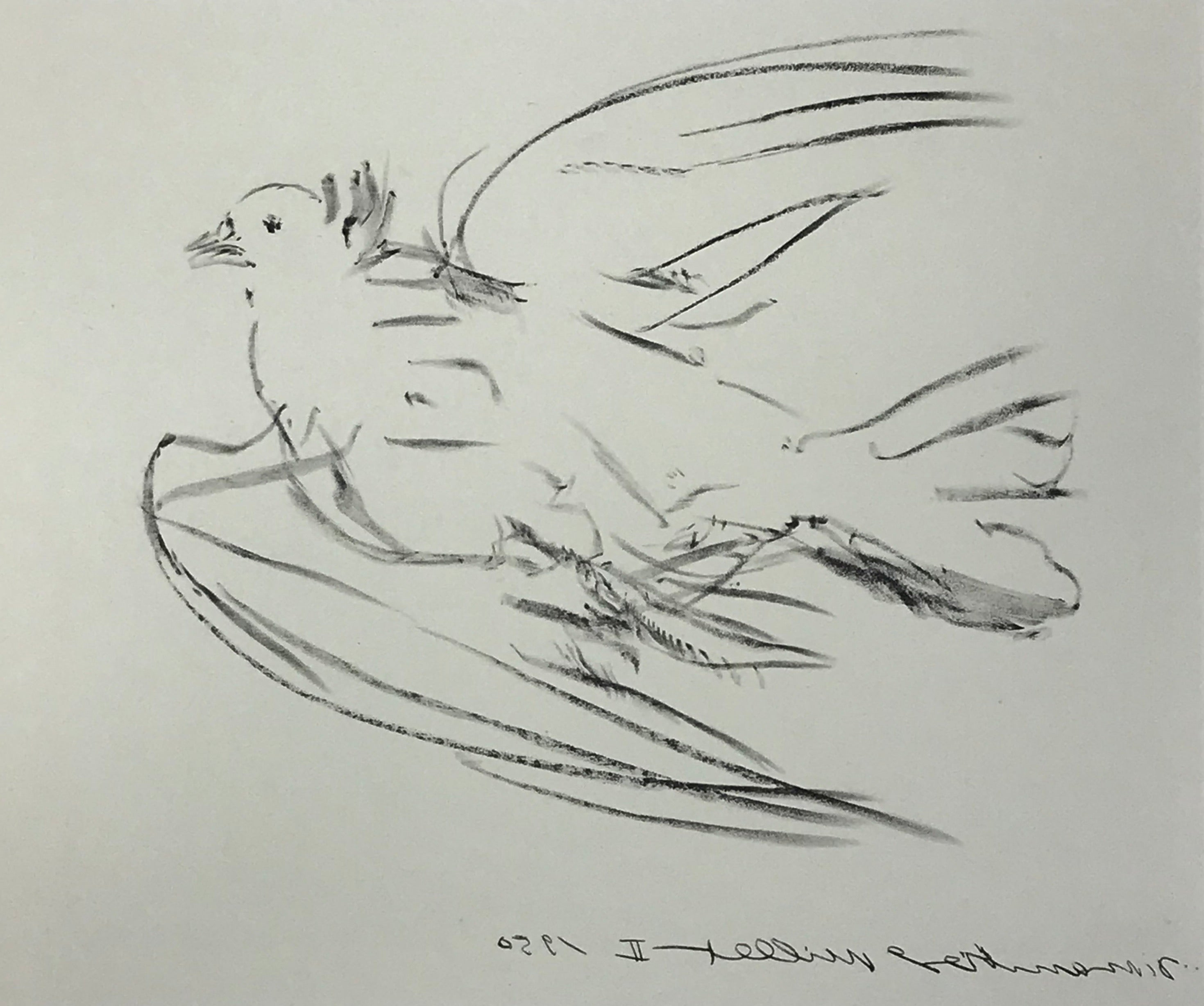 The Dove by Pablo Picasso