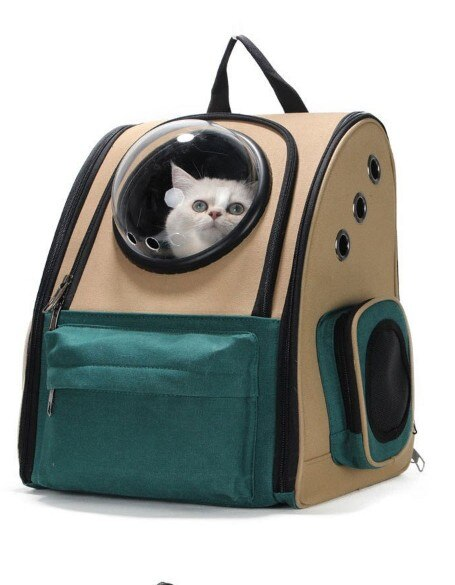 Taylor Swift Pet Space-Travel Backpack