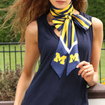 Load image into Gallery viewer, MICHIGAN WOLVERINES SLIM SCARF