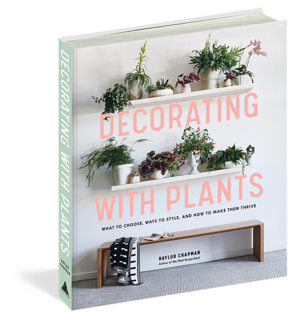 Decorating with Plants, by Baylor Chapman