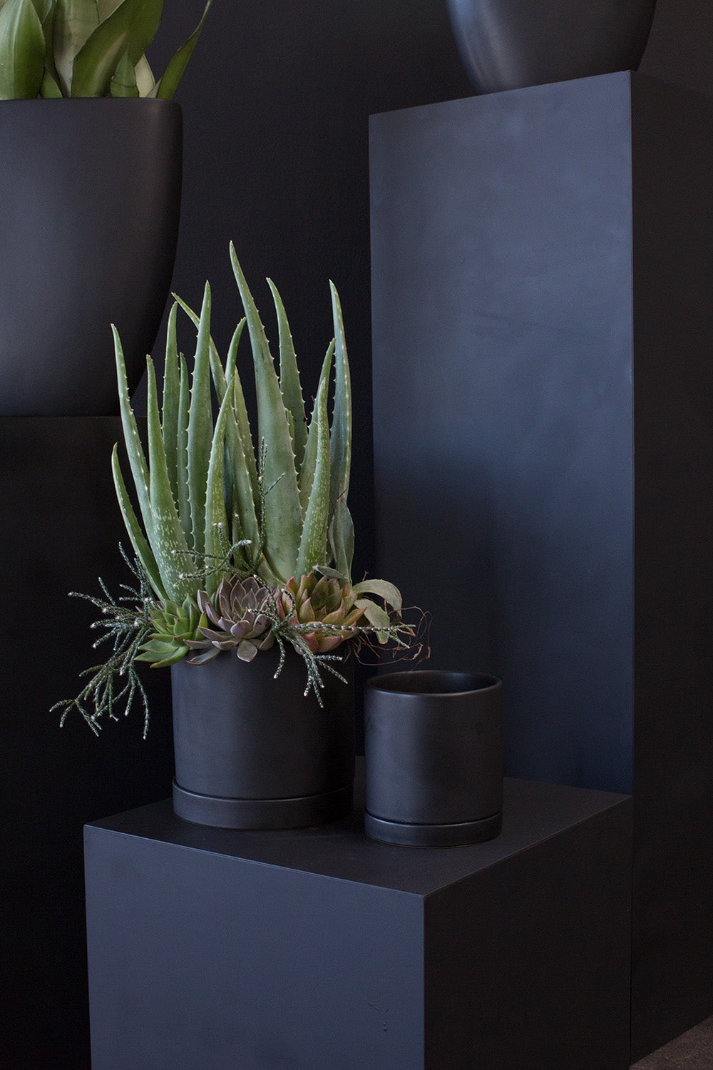 "Ceramic Pot with Saucer || 5"" in Matte Black"
