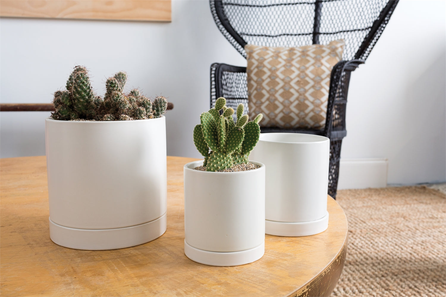 "Ceramic Pot with Saucer || 7"" in Matte White"