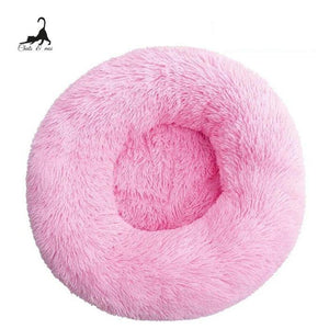 Sliring coussin pour chat confortable - Chats & Moi