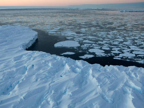 Microplastics found in Antarctic sea ice for first time, scientists say