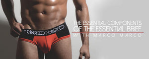 The Essential Components of the Essential Brief by Marco Marco
