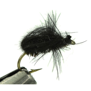 Harrop's CDC Beetle - Black