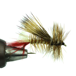 Elk Hair Hopper