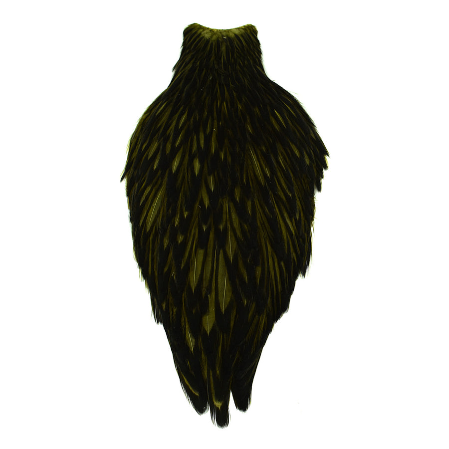 Whiting American Hen Cape