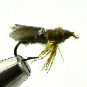 Stalcup's Diving Caddis