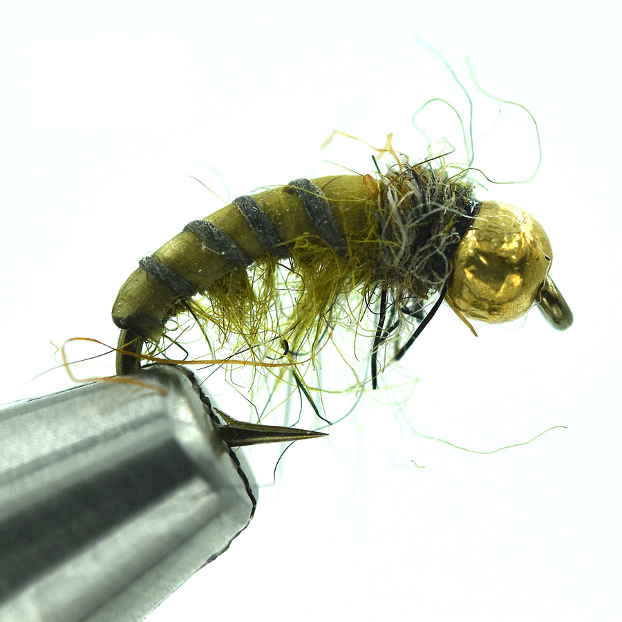 Tungsten Czech Nymph - Hydropsyche