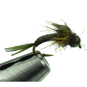 Sloan's Mighty May - BWO