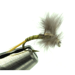 Bat Wing Emerger - PMD