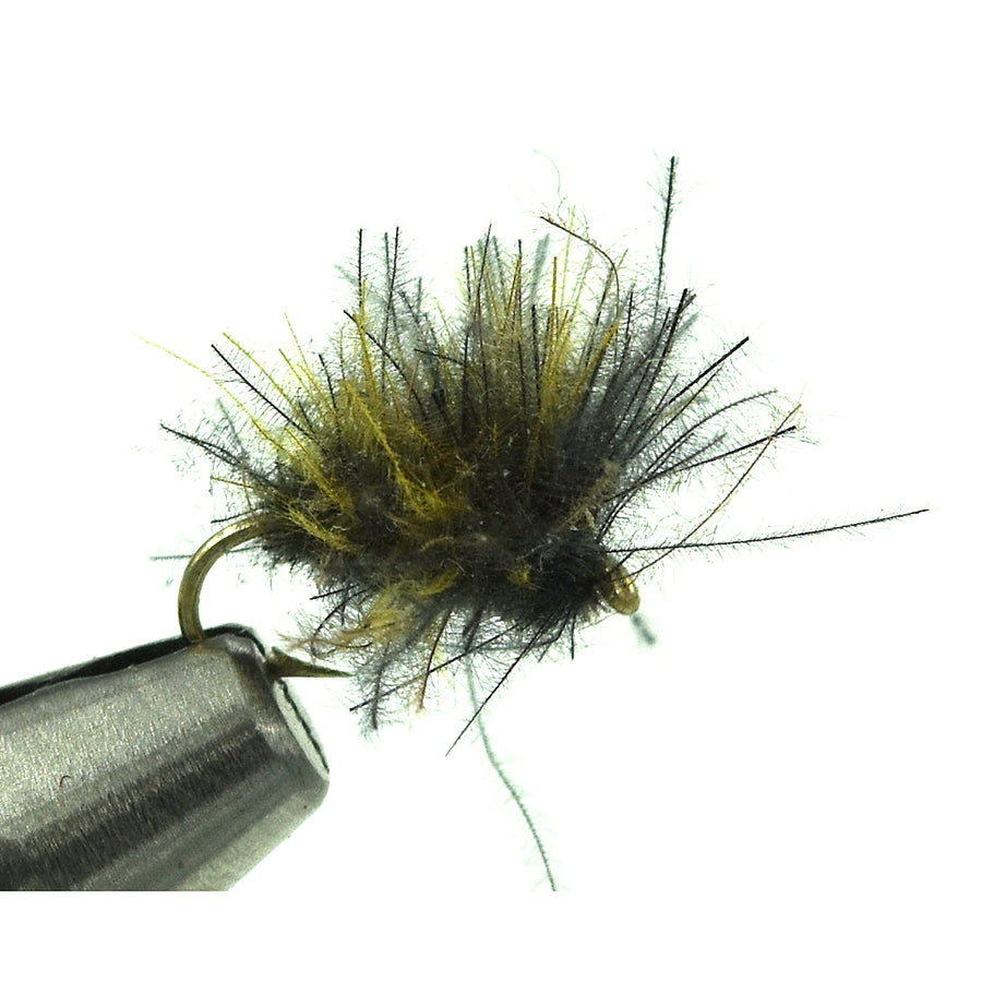 Bloom's CDC Caddis