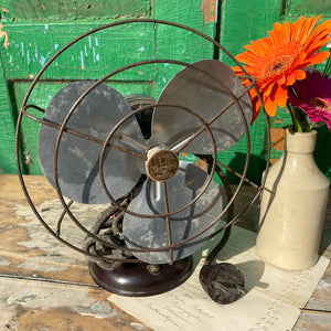 Small french Thermor fan