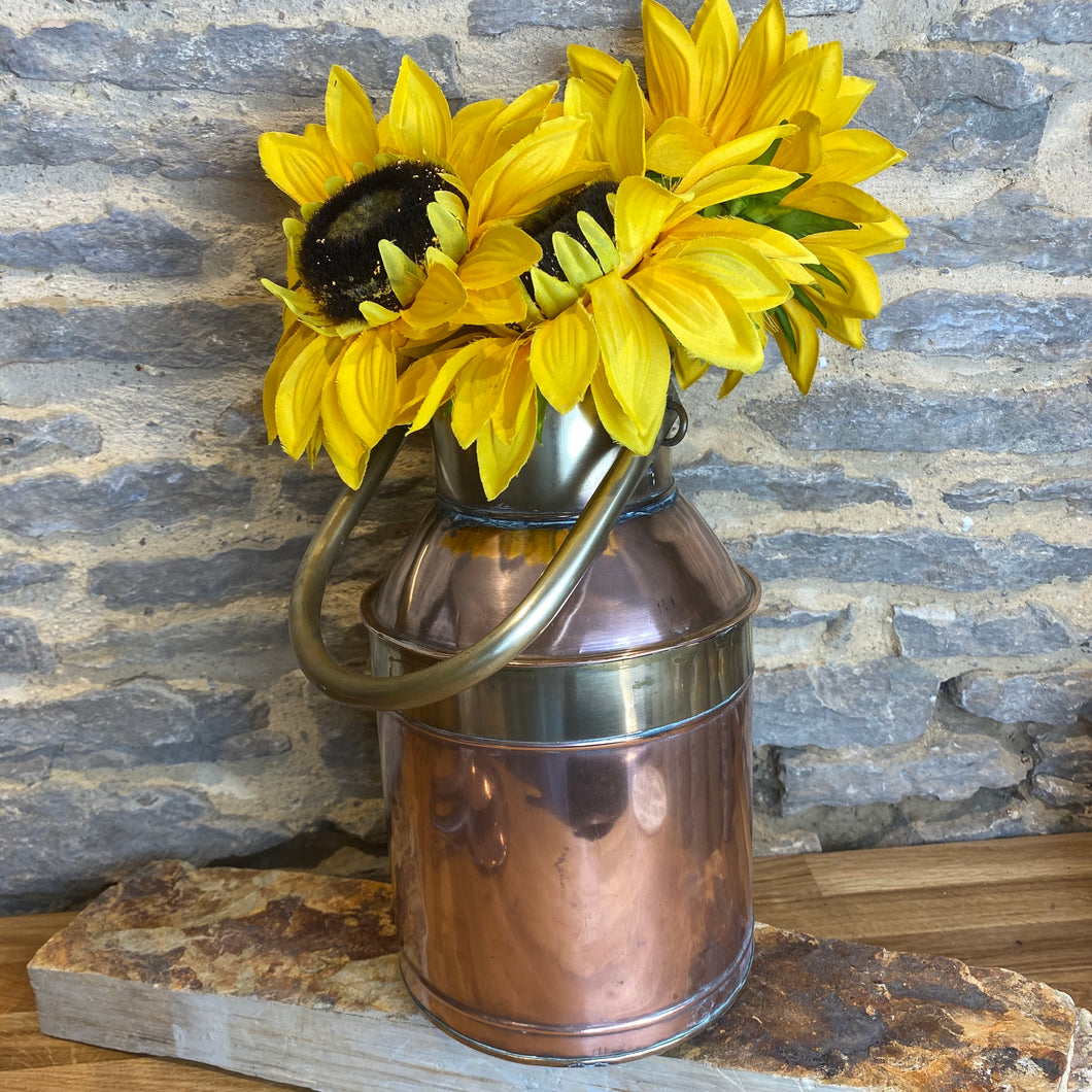 French vintage copper and brass milk churn