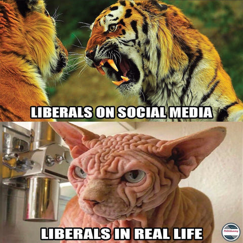 Trump 2020 masks liberal reaction