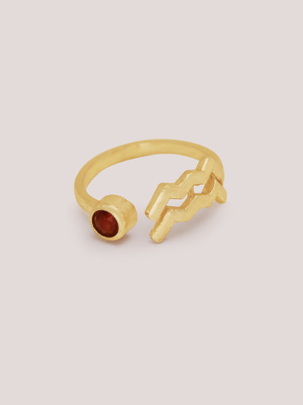 Aquarius Garnet Zodiac Ring