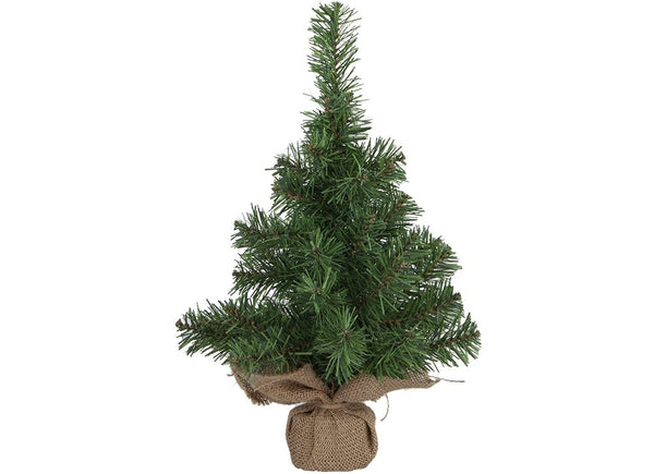 Tip Norway Pine Tree - 45cm
