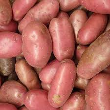 Full Sack Red Potatoes (25kg)